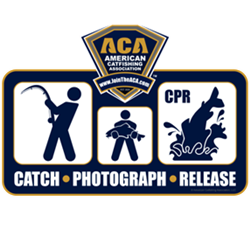 ACA CPR Decal
